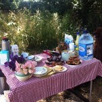Tea and cakes await the walkers