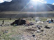 We visited a camp of the Changpa Nomads. The nomadic tribes still move their camp every 4 weeks or so, in order to get good grazing for their animals.